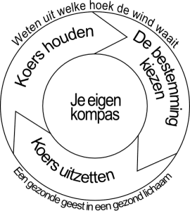 Samenwerken synergie model